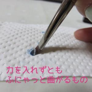 IMG_9246